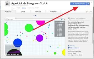 AgarioMods Evergreen Script