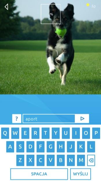 Pies z piłką
